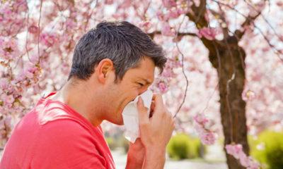 Prirodno protiv alergija - Bilje i Zdravlje