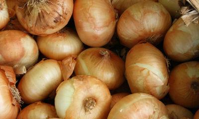 Ljekovitost kore crnog luka - Ljekovito bilje