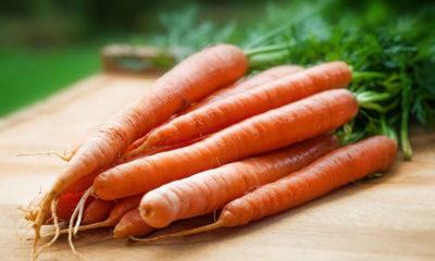 MRKVA-super namirnica za savršeno zdravlje - Ljekovito bilje