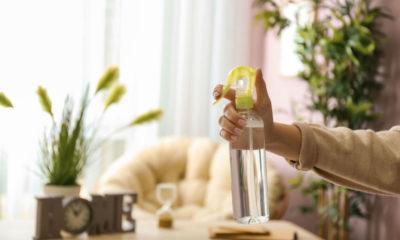Korisno i jednostavno: Napravite mirisni osvježivač zraka koji dezinficira prostor