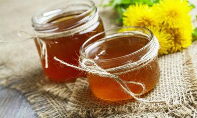 Napravite med od maslačka - Ljekovito Bilje