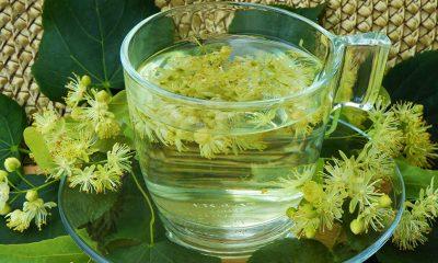 Neverovatnom brzinom zaustavljaju najteže simptome menopauze: Dva čaja sa najmoćnijim efektom! - Ljekovito bilje