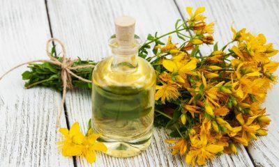 Leči kožna oboljenja, proširene vene i smanjuje rizik od raka: Ulje ove biljke svako treba da ima u kući! - Ljekovito bilje