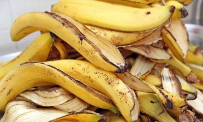 Višestruka korist od kore voća