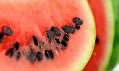 Čaj od sjemenki lubenice za bubrežne kamence - Ljekovito bilje