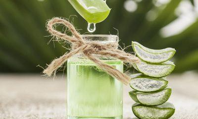 Ni jedan lek mu nije ravan: Ovaj napitak stabilizuje šećer, čuva zdravlje srce i jača imunitet! (RECEPT) - Ljekvotio bilje