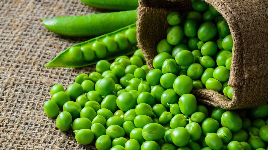 Čudotvorno povrće: Čuva nervni sistem, srce i kosti, reguliše šećer i krvni pritisak! - Ljekovito bilje