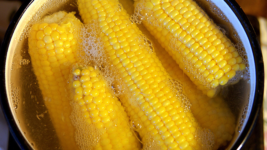 Bareni kukuruz je spas za celo telo: Ali samo ako izbegnete ovu grešku dok ga kuvate! - Ljekovito bilje