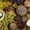 Iskusni travar ima rešenje za sve: Sedam neverovatnih recepata za letnje bolesti ! - Ljekovito bilje